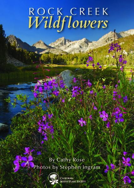 Cover of Rock Creek Wildflowers